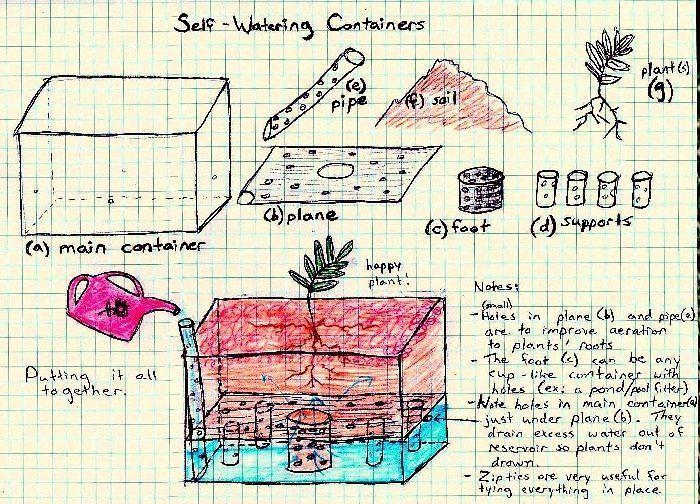 sistema de drenaje plantas aromáticas
