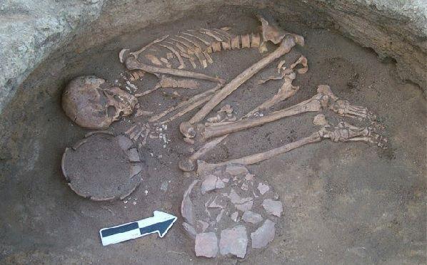 yacimiento prehistórico con juncia real